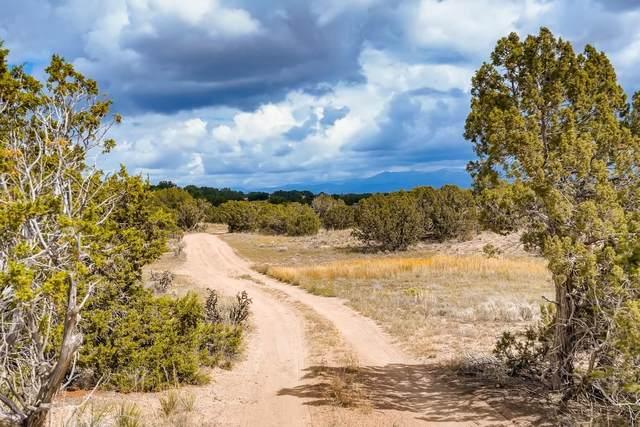 41 Camino De Rey, Santa Fe, NM 87506 (MLS #202104493) :: Neil Lyon Group | Sotheby's International Realty