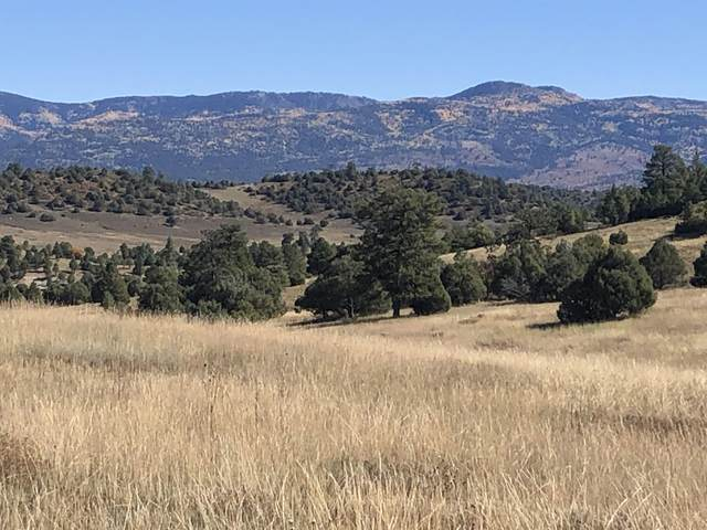 TBD Encino Drive, Chama, NM 87520 (MLS #202104518) :: The Very Best of Santa Fe
