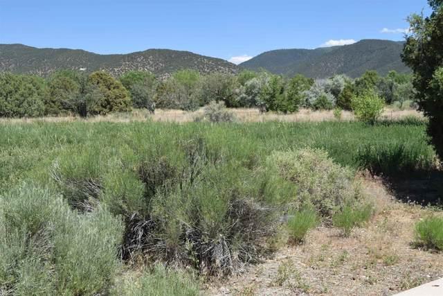- Via Manzana, Taos, NM 87571 (MLS #202104543) :: Stephanie Hamilton Real Estate