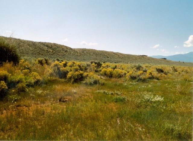 - Blueberry Hill Rd, Taos, NM 87529 (MLS #202104562) :: Stephanie Hamilton Real Estate