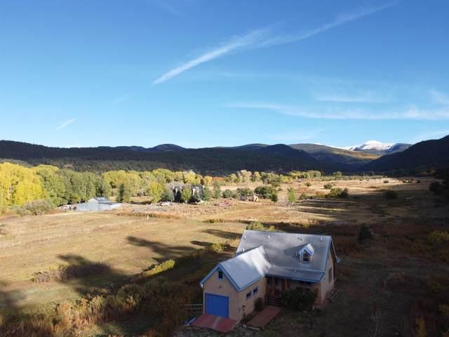 63A Camino De Abajo, Vadito, NM 87579 (MLS #202104606) :: The Very Best of Santa Fe