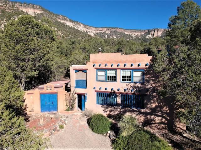 575 Redondo Road, Jemez Springs, NM 87025 (MLS #202104610) :: The Very Best of Santa Fe