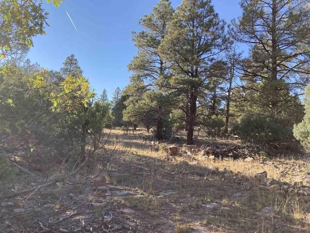 Turkey Trail, G Turkey Trail, Rutheron, NM 87551 (MLS #202104622) :: Stephanie Hamilton Real Estate