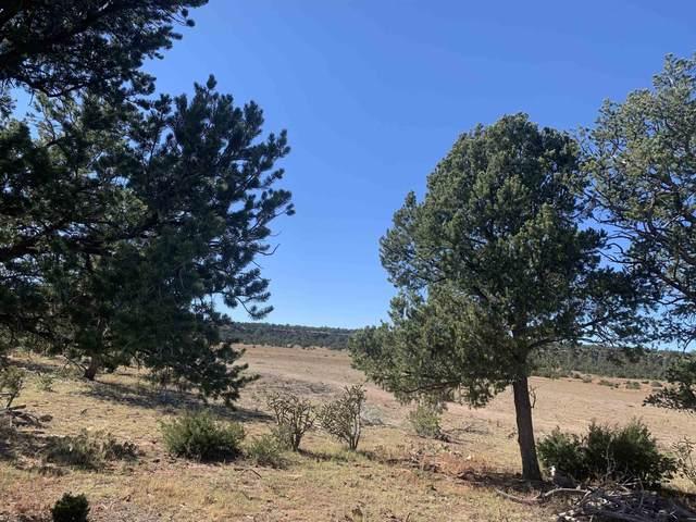232 Arroyo Salado, Santa Fe, NM 87508 (MLS #202104635) :: Neil Lyon Group | Sotheby's International Realty