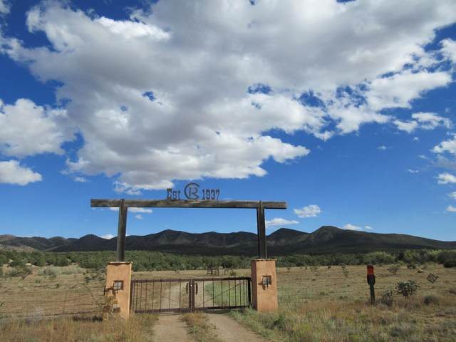 22 La Madera Road, Sandia Park, NM 87047 (MLS #202104678) :: The Very Best of Santa Fe