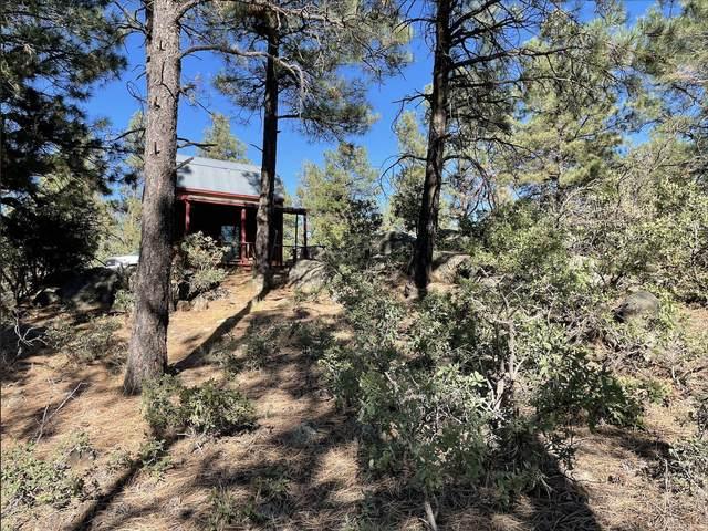 14.55ac Off Pine Tree Rd, Buena Vista, NM 87712 (MLS #202104679) :: Neil Lyon Group | Sotheby's International Realty