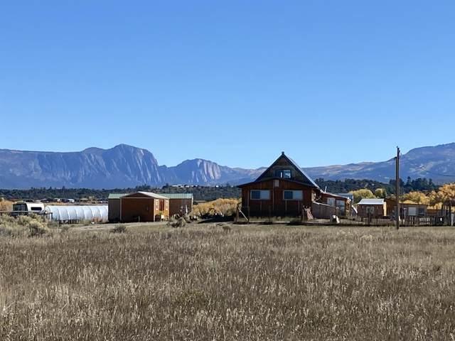 11 572, Los Ojos, NM 87551 (MLS #202104689) :: Stephanie Hamilton Real Estate