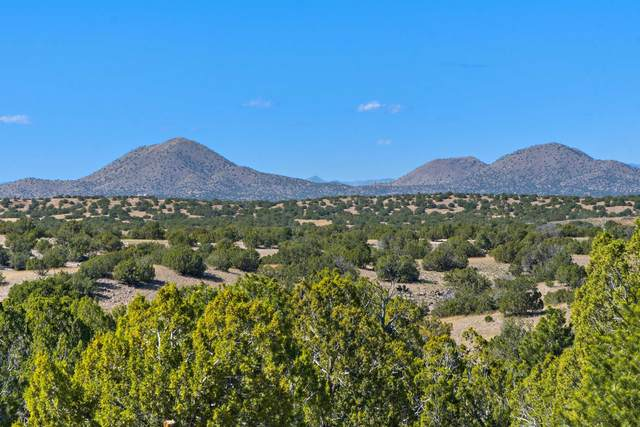 84 West Basin Ridge Road, Lamy, NM 87540 (MLS #202104694) :: Stephanie Hamilton Real Estate