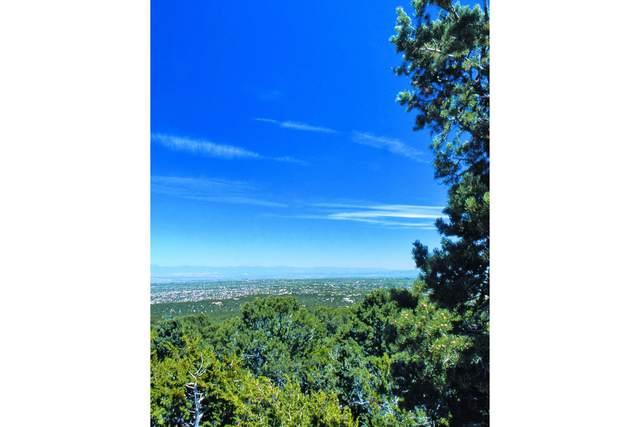 1104 S Summit Ridge Lot 34A, Santa Fe, NM 87501 (MLS #202104746) :: Summit Group Real Estate Professionals