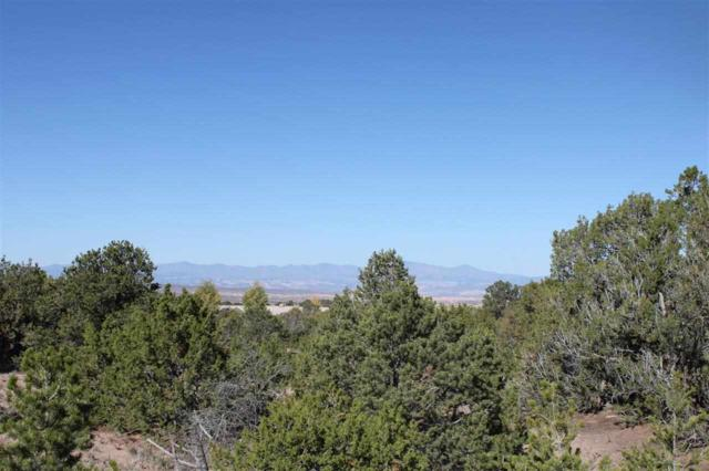 22 Camino Amor, Lot 46, Tesuque, NM 87574 (MLS #201305202) :: Deborah Cox & Associates