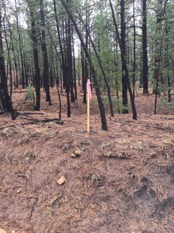 12.29 Acres Trumble Canyon, Mora, NM 87732 (MLS #201501763) :: Berkshire Hathaway HomeServices Santa Fe Real Estate