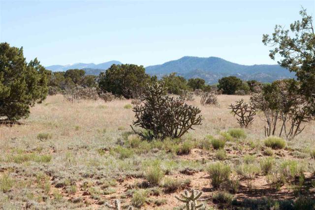 67 C Droege Road (Lot C3 10.001 A), Santa Fe, NM 87508 (MLS #201601382) :: The Desmond Group