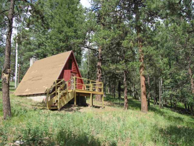7 Iron Trail, Pecos, NM 87552 (MLS #201602015) :: The Desmond Group