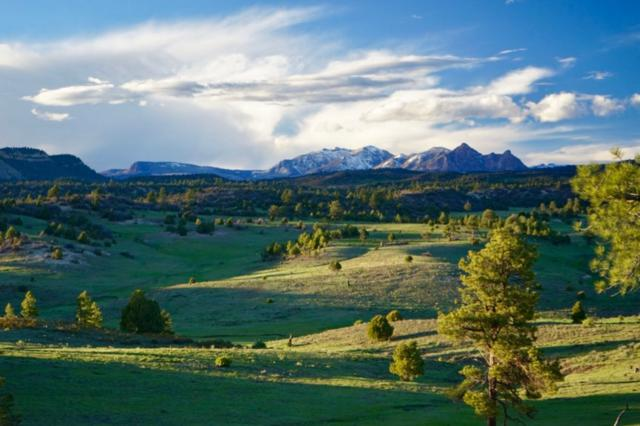 Ranch, Chama, NM 87520 (MLS #201604487) :: The Very Best of Santa Fe