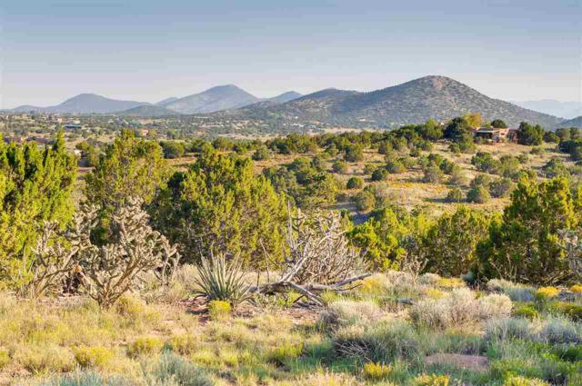 99 Camino Acote Lot 13, Santa Fe, NM 87508 (MLS #201703997) :: The Desmond Group