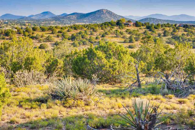 97 Camino Acote Lot 12, Santa Fe, NM 87508 (MLS #201703999) :: The Desmond Group