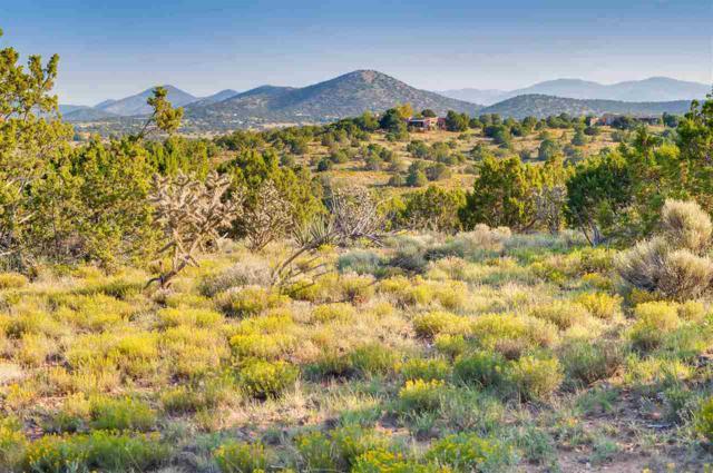 92 Camino Acote Lot 15, Santa Fe, NM 87508 (MLS #201704000) :: The Desmond Group