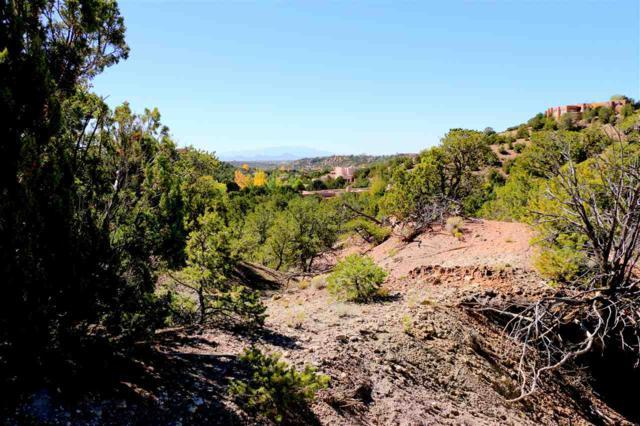 1010 Sierra Del Norte (Lot 24), Santa Fe, NM 87501 (MLS #201704939) :: The Desmond Group