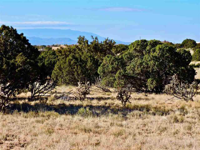 4 Herrada Ct., Santa Fe, NM 87508 (MLS #201705561) :: DeVito & Desmond