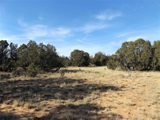 Tract CM-46 Britt Drive, Santa Rosa, NM 88321 (MLS #201800013) :: The Desmond Group