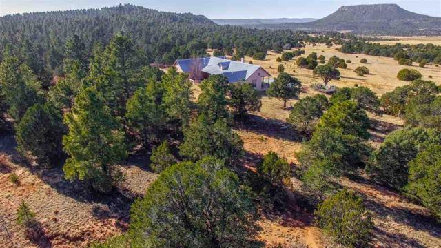 Red Cloud Ranch -241 County Road A20, Las Vegas, NM 87701 (MLS #201800104) :: The Very Best of Santa Fe