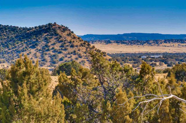21 Cerro Alto Road, Lamy, NM 87540 (MLS #201800381) :: The Very Best of Santa Fe