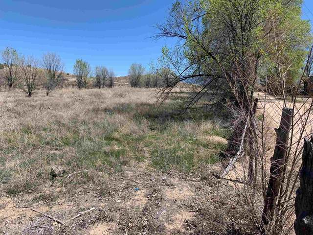 Private Drive 1130/ Hwy 399, La Mesilla, NM 87532 (MLS #201800409) :: Stephanie Hamilton Real Estate