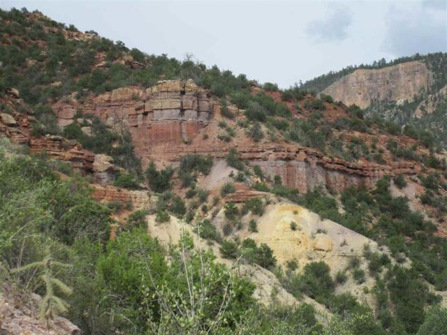 Valley Of The Spirit Ranch, Tract A, Jemez Springs, NM 87025 (MLS #201800925) :: The Desmond Group