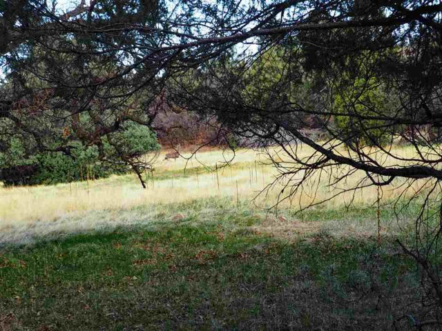Lot 3 Unit 6 Co. Rd. 341 Ponderosa, Chama, NM 87520 (MLS #201801773) :: The Very Best of Santa Fe