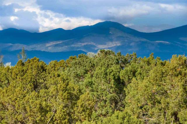 15 Calle Varada, Santa Fe, NM 87507 (MLS #201802605) :: The Desmond Group