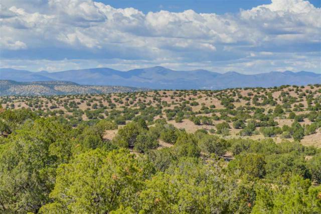 146 Headquarters Trail Lot 72, Santa Fe, NM 87506 (MLS #201802784) :: The Desmond Group