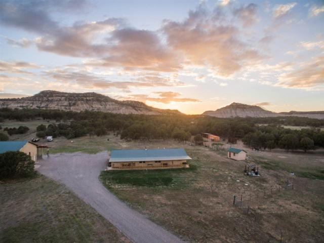 1177 State Highway 96, Lindrith, NM 87046 (MLS #201802937) :: The Very Best of Santa Fe
