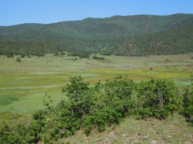 Ranch, Chacon, NM 87713 (MLS #201803152) :: The Desmond Group