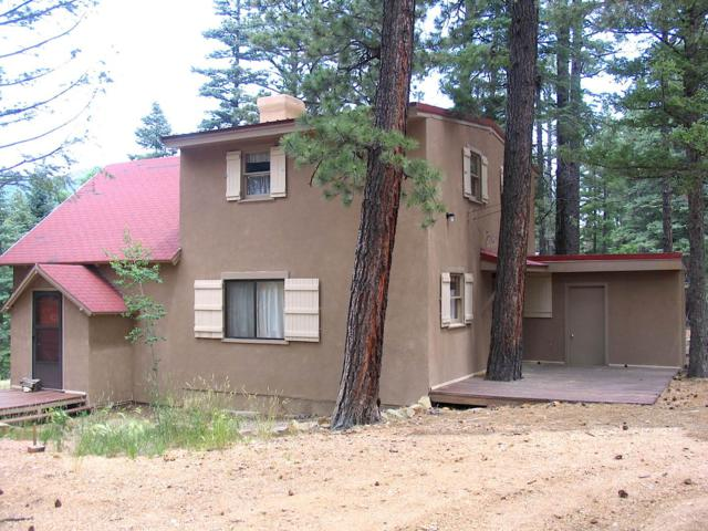 8 Sawyer's Village, Mora, NM 87732 (MLS #201803505) :: The Bigelow Team / Realty One of New Mexico