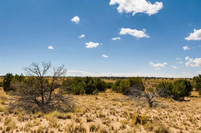 200 Thornton Ranch, Lamy, NM 87540 (MLS #201804070) :: The Desmond Group