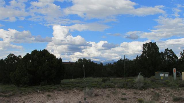 19 Rabbitbrush, Santa Fe, NM 87506 (MLS #201804303) :: The Desmond Group