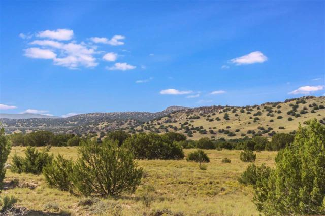 0 Camino Los Abuelos, Galisteo, NM 87540 (MLS #201804388) :: The Desmond Group