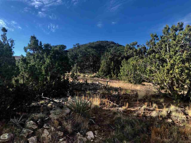 11-B Old Santa Fe Way, Santa Fe, NM 87505 (MLS #201804811) :: The Very Best of Santa Fe