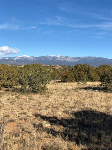 38 Primrose Circle - Lot 69, Santa Fe, NM 87506 (MLS #201805359) :: The Desmond Group