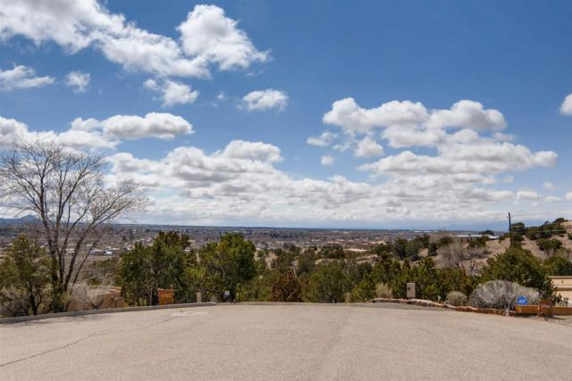 1704 Watchpoint, Santa Fe, NM 87507 (MLS #201900739) :: The Desmond Group