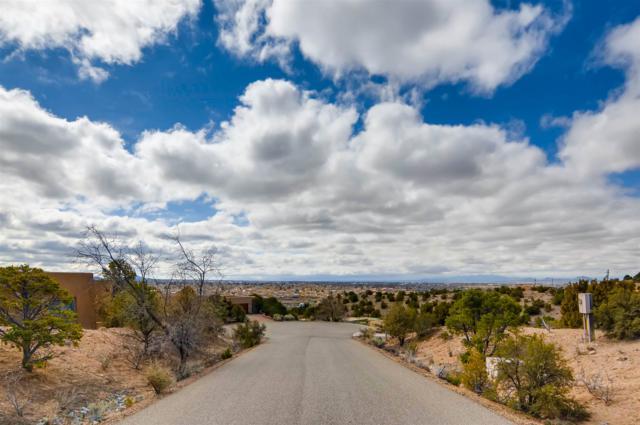 1707 Painted Sky, Santa Fe, NM 87507 (MLS #201900745) :: The Desmond Group