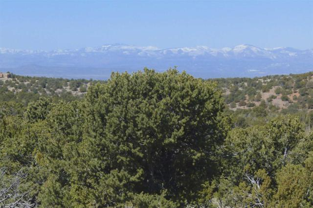 2063 Cerros Altos, Santa Fe, NM 87501 (MLS #201901040) :: The Very Best of Santa Fe