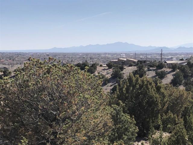 1703 Painted Sky, Santa Fe, NM 87507 (MLS #201901076) :: The Desmond Group