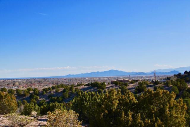 1705 Painted Sky, Santa Fe, NM 87507 (MLS #201901127) :: The Desmond Group