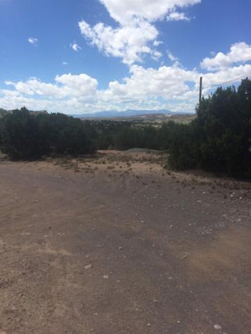 16 Roadrunner Road, Ojo Caliente, NM 87549 (MLS #201901331) :: The Bigelow Team / Realty One of New Mexico