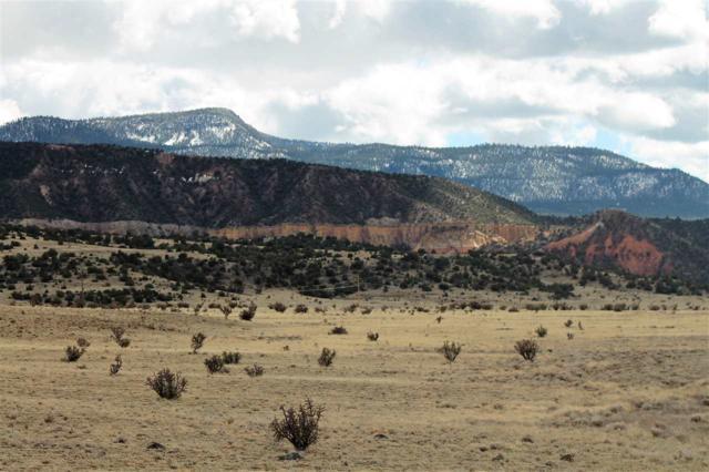 Off Nm 96 247.7 Acres, Abiquiu, NM 87510 (MLS #201901360) :: The Very Best of Santa Fe