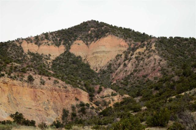 Off Nm 96 455.4 Acres, Abiquiu, NM 87510 (MLS #201901378) :: The Very Best of Santa Fe