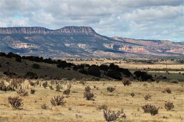 Off Nm 96 455.4 Acres, Abiquiu, NM 87510 (MLS #201901380) :: The Very Best of Santa Fe