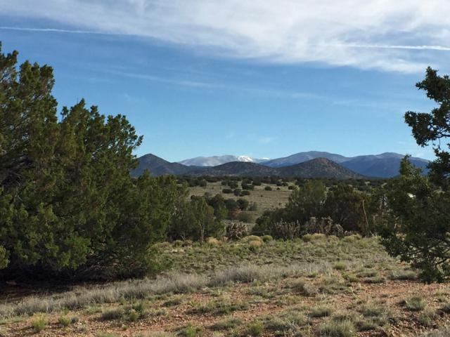 28 Old Road, Lamy, NM 87540 (MLS #201901459) :: The Desmond Group
