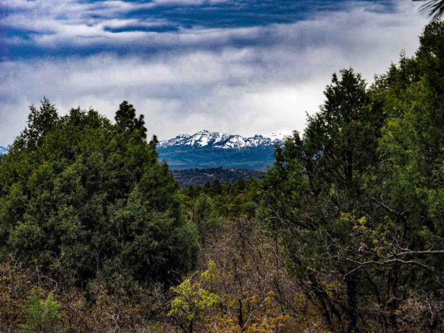Tract 18 Ponderosa - Unit 1 Ponderosa, Chama, NM 87520 (MLS #201901656) :: The Very Best of Santa Fe